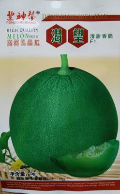 这是一张关于甜瓜种子的产品图片