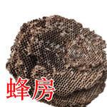 贵州省安顺市普定县蜂房