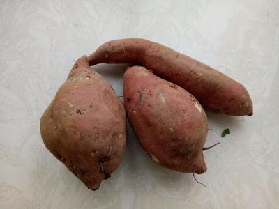 陕西西安未央区白板薯 1斤以上