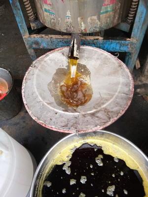 湖南湘西吉首市野生山茶油 4L