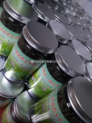 陕西榆林定边县苦菜茶 罐装 1.0年 一级