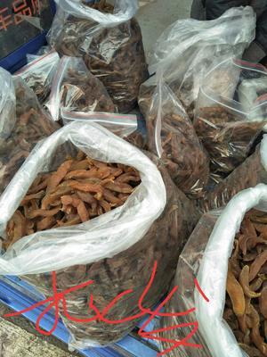 江西赣州于都县农家自制生地瓜干 条状 袋装 1年以上