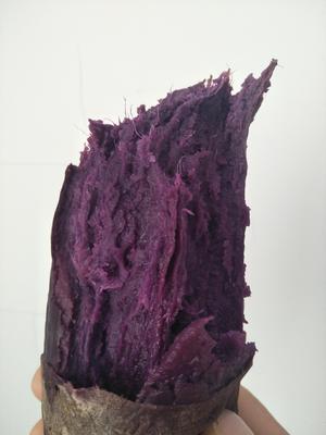 山东威海环翠区紫罗兰紫薯 3两以上