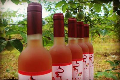 广西柳州柳南区红酒 15-20度