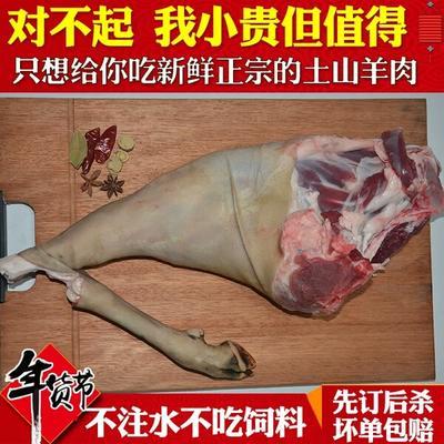 云南临沧永德县羊肉类 生肉