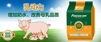上海闵行区母猪催奶