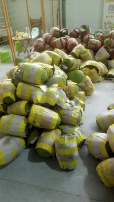 广西崇左凭祥市泰国菠萝蜜 10-15斤