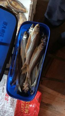 安徽黄山黄山区鱼干类