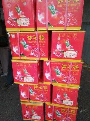 云南省昆明市官渡区蒙自石榴 0.6 - 0.8斤