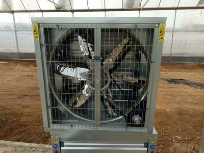 山东省潍坊市青州市冷风机水帘降温系统