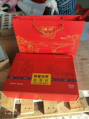 陕西西安周至县红阳猕猴桃 70~90克