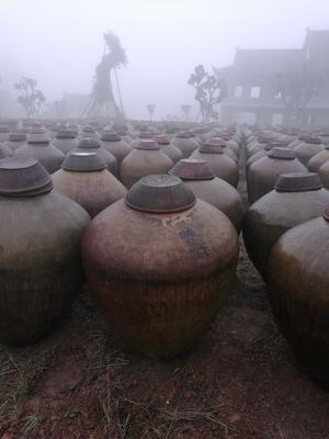 贵州遵义赤水市麦麸