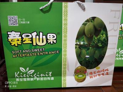 四川成都彭州市翠香猕猴桃 90~100克