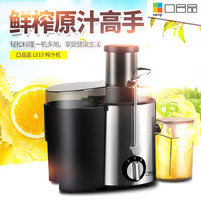 广东佛山三水区榨汁机