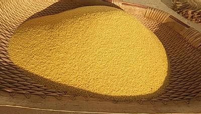 陕西咸阳杨陵区米脂小米