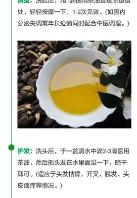 广西百色田东县现榨山茶油 5L
