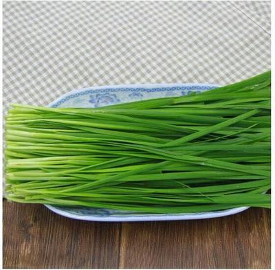 贵州省黔南布依族苗族自治州荔波县小叶韭菜 二茬 20cm以下