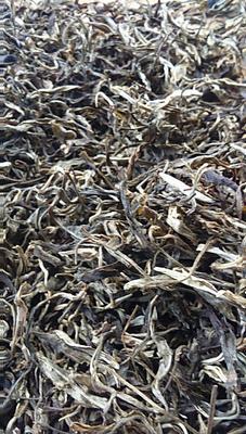 云南西双版纳勐海县普洱生茶 散装 一级