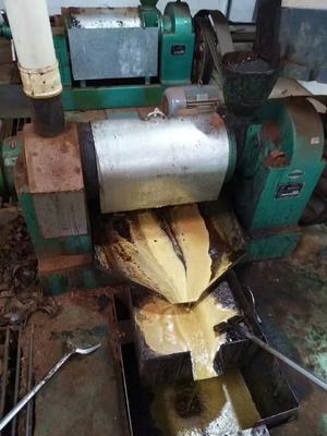 四川成都青羊区自榨纯菜籽油 5L以上