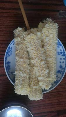 黑龙江省哈尔滨市香坊区速冻糯玉米