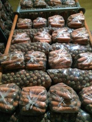 山东省青岛市莱西市三红胡萝卜 15cm以上 3两以上 3~4cm