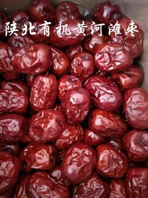 陕西榆林佳县陕西红枣 统货
