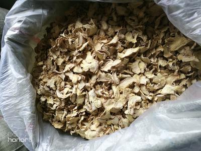 贵州黔西兴义市小黄姜干姜片 双层塑料袋 12-18个月