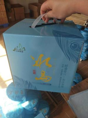 福建泉州南安市冰岛古树大叶生茶香气 盒装 特级