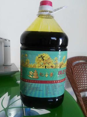 陕西渭南富平县压榨菜籽油 5L以上