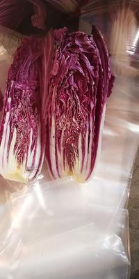 河南省开封市兰考县紫白菜 1~2斤 净菜