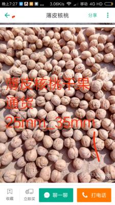 山东济南平阴县薄皮核桃