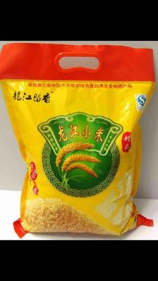 河南郑州新郑市龙江留香小米