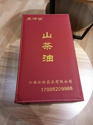 安徽六安舒城县现榨山茶油 2L