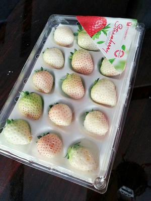 江苏镇江丹阳市农家土鹅 统货 全散养 8-10斤
