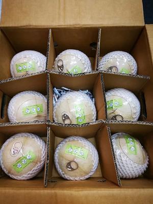 广东深圳龙岗区泰国香水椰 1.5 - 2斤