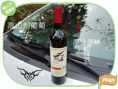 湖南衡阳衡东县红酒 10-15度
