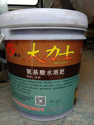 河北邯郸永年县液体肥料