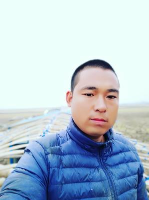 湖北荆州监利县麒麟西瓜 有籽 1茬 8成熟 7斤打底
