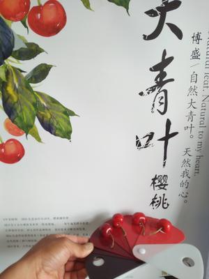 辽宁大连金州区明珠樱桃 20mm以上 18-20g