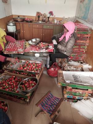山东青岛平度市甜宝草莓 30克以上
