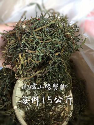 云南思茅思茅区螃蟹脚 盒装 恒温长期保存 特级