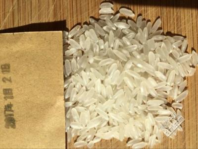 黑龙江齐齐哈尔泰来县龙阳16大米 有机大米 晚稻 一等品