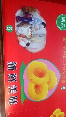安徽宿州砀山县黄桃罐头 12-18个月