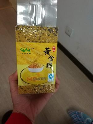 天津塘沽沁州黄