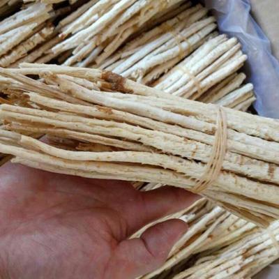 这是一张关于北沙参种子的产品图片
