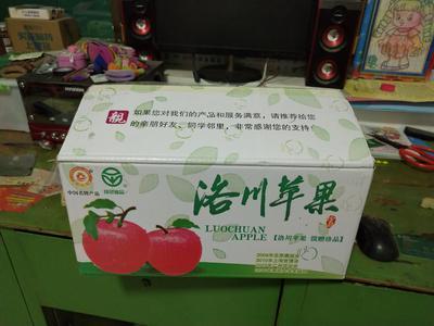 陕西延安洛川县洛川苹果 纸袋 条红 80mm以上