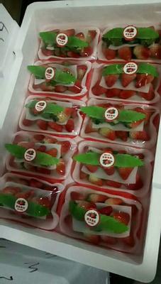 安徽合肥长丰县红颜草莓 20克以上