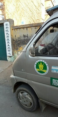 山东潍坊昌乐县姜种 带土 9两以上