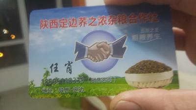 陕西榆林定边县黑荞麦