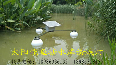 湖北襄樊襄城区灭虫灯